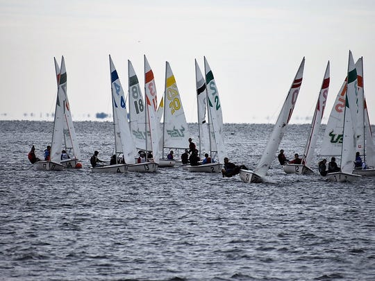 Teams compete Jan. 28 at a high school sailing regatta in St. Petersburg. South Fork High School's sailing team placed second overall in a field of 27 teams.