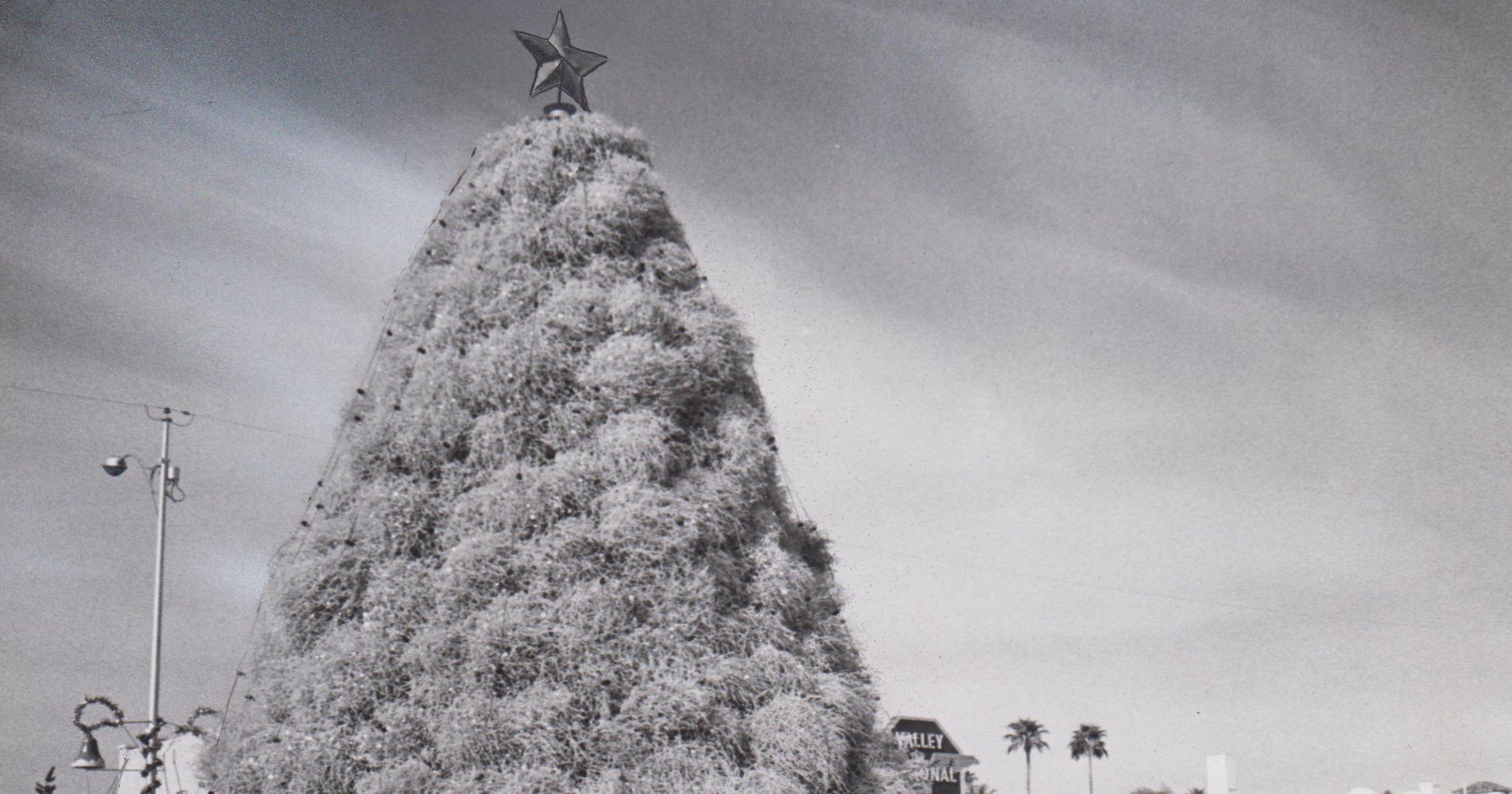 Arizona Then & Now: Tumbleweed Christmas Tree