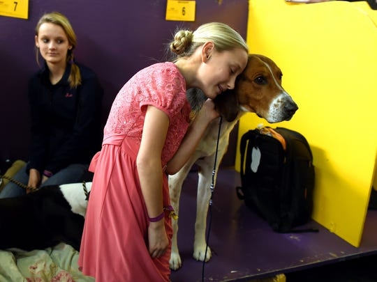 """Faith Rogers,11, with American Foxhound """"Bobby at the 139th Annual Westminster Kennel Club Dog Show February 16, 2015."""