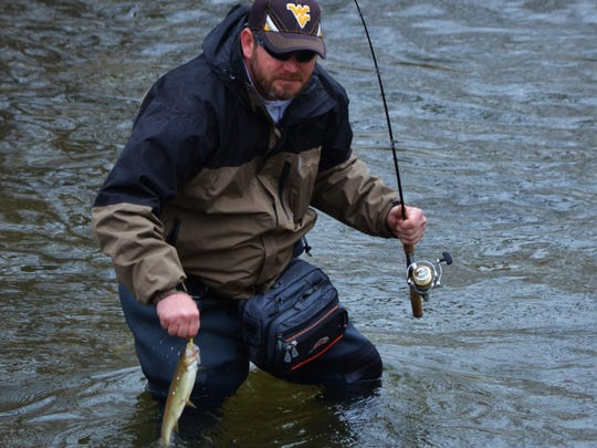 An angler catches one of the many rainbow trout stocked by the state.