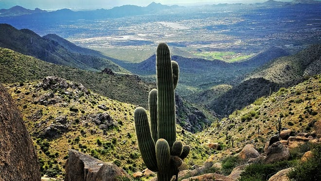 The Tom's Thumb Trail in Scottsdale's McDowell Sonoran Preserve offers stunning views.