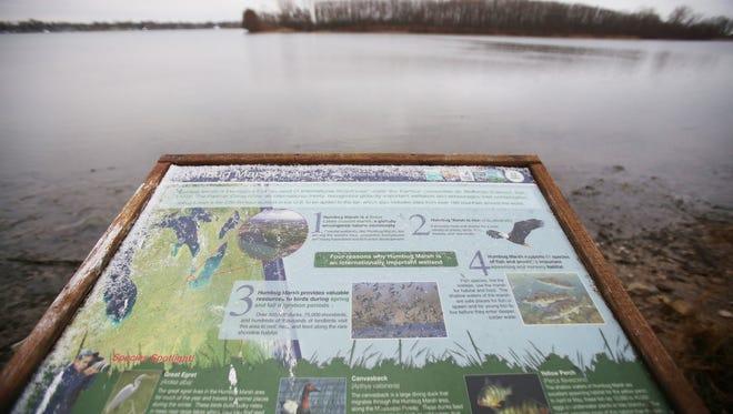 Humbug Marsh, the centerpiece of the Detroit International Wildlife Refuge is photographed on Wednesday, Dec. 17, 2014.
