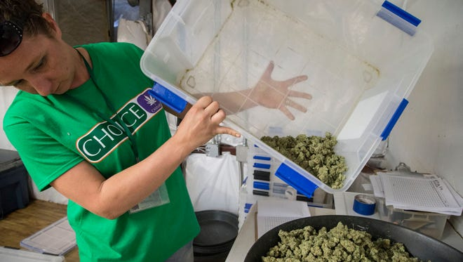 Jodi Lenz prepares medical marijuana for packaging at Mohave Green in Arizona. The dispensary currently can produce about 2,500 pounds of pot a year.