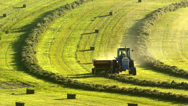 A worker bales a harvest of alfalfa at a farm near Madras.