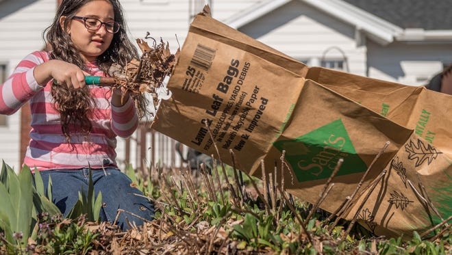 Aubrianna Caldwell, 8, works in her front yard doing spring clean-up on Sunday.