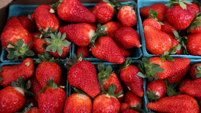 Oregon strawberries can be purchased at local farmers markets or at you-pick farms and farm stands.