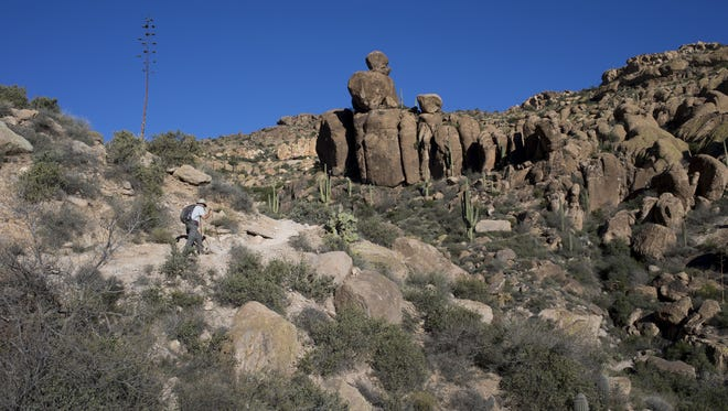 The Peralta Trail in the Superstition Wilderness east of Phoenix.