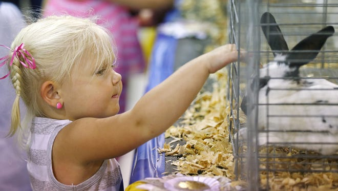 There's more to do than pet farm animals at the Indiana State Fair.