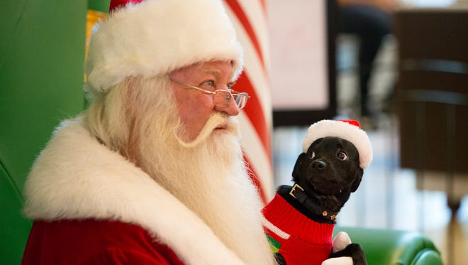 Gucci looks up at Santa as a photo is taken during pet night at La Palmera Mall on Monday Nov. 14, 2016.