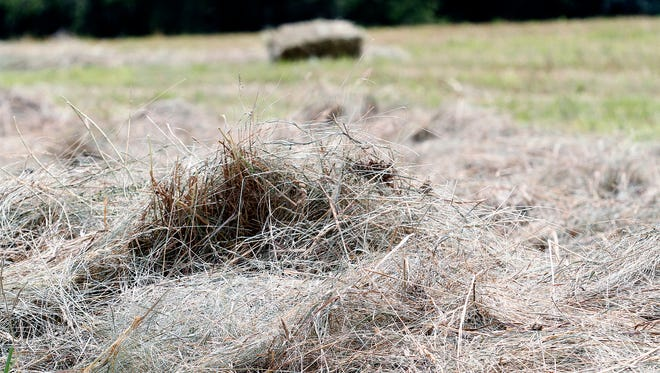 A Trempealeau County UW-Extension ag agent helped a Wisconsin farmer donate hay to North Dakota ranchers who are short of hay because of a drought.