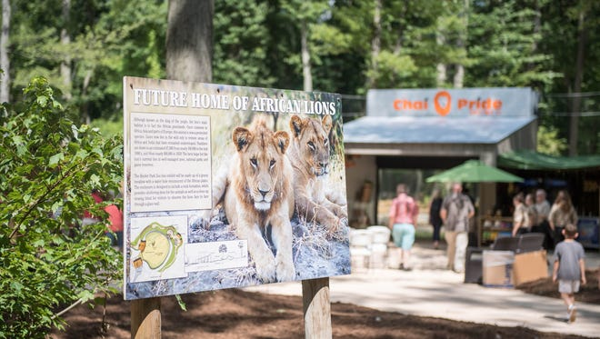 The new African lion exhibit opens to the public on Tuesday at Binder Park Zoo.