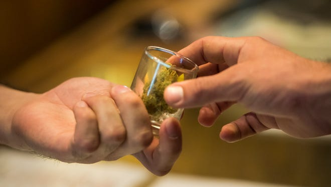 Budtender Rob Tortora shows customer Peter Rosis a sample of one of the store's varieties of cannabis on Aug. 23 at Organic Alternatives in Old Town Fort Collins.