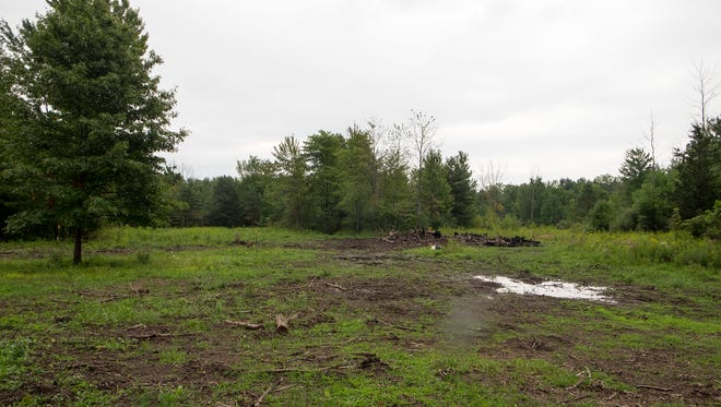A home builder wants to build on a floodplain in Fort Gratiot. The township initially denied his permits, but the DEQ could certify that he's above the permits and allow the build.