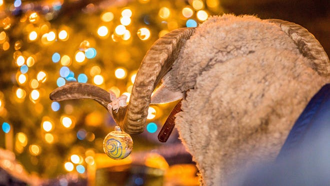 Angelo State University's annual Christmas Tree Lighting Ceremonyin the Memorial Oak Grove