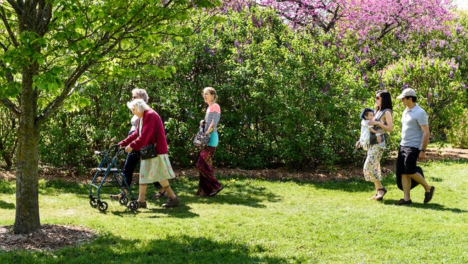 A steady stream of people enjoy the flowering trees and springtime view while walking through the University of Wisconsin-Madison Arboretum's Longenecker Gardens during Mother's Day in 2016.