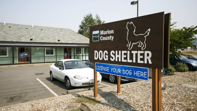 The Marion County Dog Shelter on Tuesday, Aug. 8, 2017. The shelter is looking for a new dog services manager after their previous manager was fired in July.