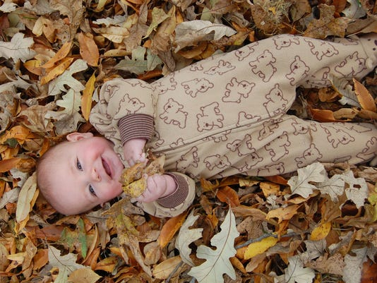 635808577361435026-10.25.15---Henry-in-the-Leaves