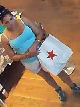 Police are looking for this woman, seen on a surveillance photo from a New Jersey mall, after credit cards stolen from Tourne Park in Boonton Township were used there to make purchases.