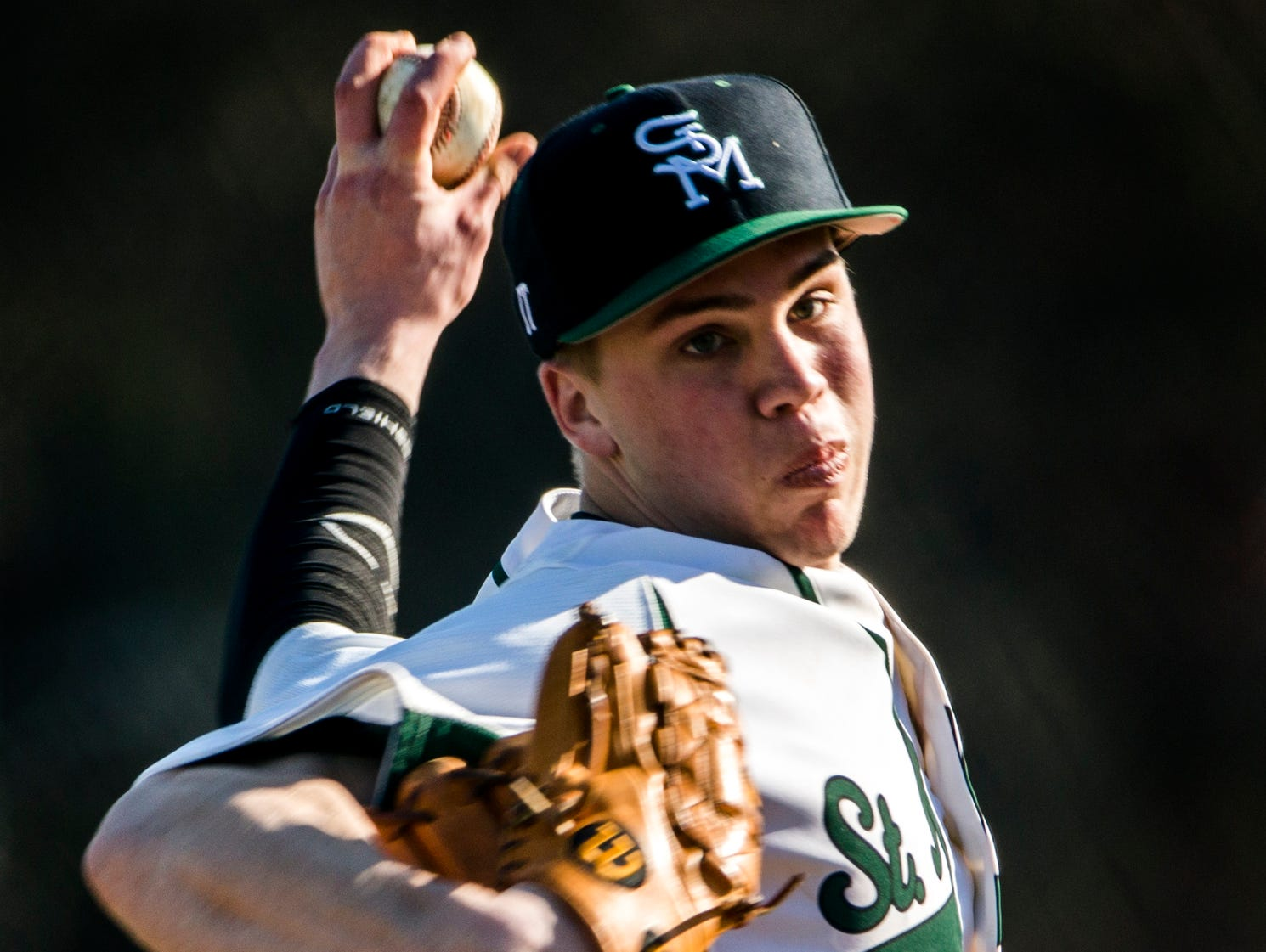 St. Mark's pitcher Andrew Reich delivers a pitch in St. Mark's 12-0 win over Hodgson at St. Mark's High School on Wednesday afternoon. Reich pitched a no-hitter over a five-inning complete game.