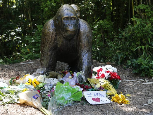 Flowers and other items were left Monday at the Gorilla