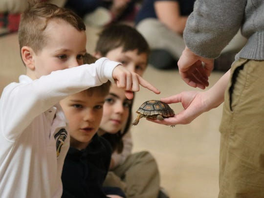 Students at Immaculate Conception School got the chance to pet a young desert tortoise from the Toledo Zoo during their outreach program about habitats.