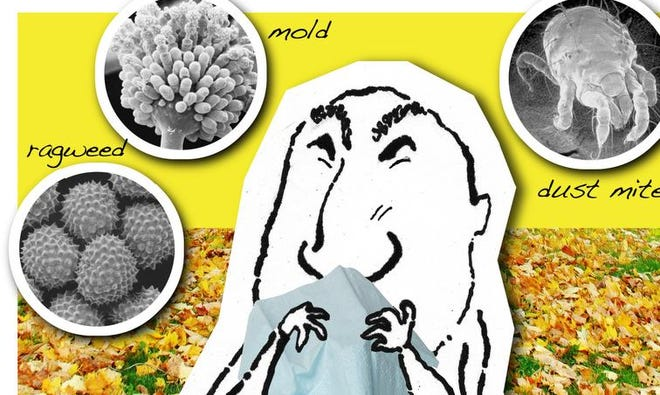 Fall allergies: Tips to ease symptoms caused by ragweed, mold and dust mites.