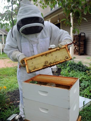 Jacob Shuman opens one of his hives Aug. 6 at his home in Chillicothe. Shuman was one of four students nationally named a finalist for the 4-H Youth in Action Award.