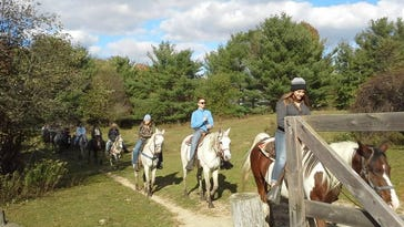 Lifetime passion leads to equine endeavor