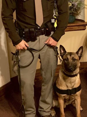 Micky, a 2-year-old Belgium malinois, began patrolling Carroll County with sheriff's Deputy Drew Yoder.