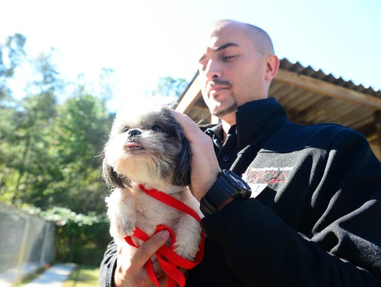 Walter Fenstermacher, Brandywine Valley director of operations holds Maya, a Shih Tzu that will be up for adoption at the Brandywine Valley SPCA Georgetown Campus after being rescued from an animal hoarding situation in Seaford, Del.