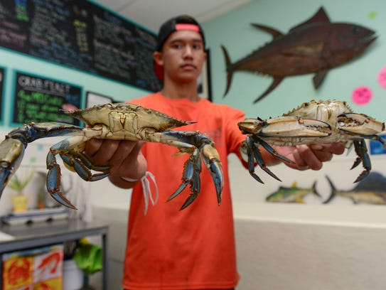 Fresh local seafood on delmarva for Jessup fish market