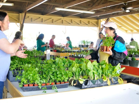 Master Gardener plant sale at Farmers Market