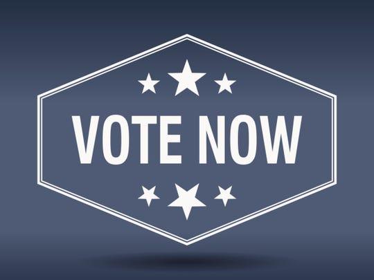 vote now hexagonal white vintage retro style label