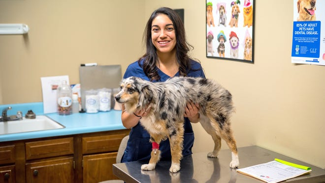 Cherokee Marquez chose to begin her career in animal care. The Zoology major from Western New Mexico University is trying to get her toes wet before pursuing a dream of working at a zoo.