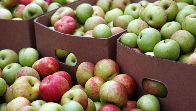 Apples for sale at the N.C. Apple Festival in early September. Henderson County growers say a year of volatile weather hurt this year's crop.