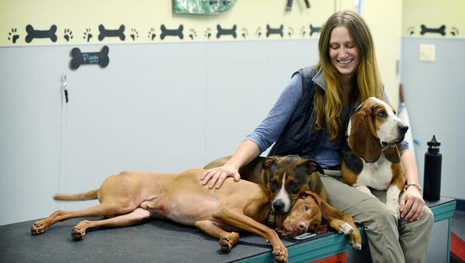 Marianna Parker sits with the large dogs enrolled in the Canine social club, from left, Catch, Mugsy and Ben, during the grand opening of the Animal Rehab Center and Social Club, an expansion of the Charlotte Street Animal Hospital, on Thursday, Oct. 1, 2015. The social club provides services like a doggie daycare with more structured enrichment activities.