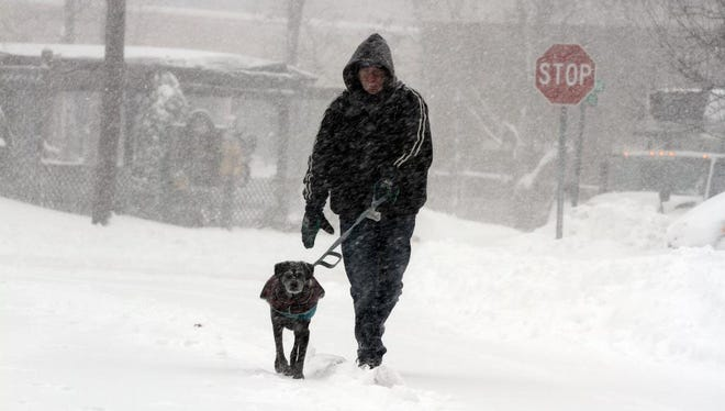 Bob Smith of Scotch Plains and his 12-year-old dog, Polo, getb their morning walk in along Princeton Avenue in Scotch Plains, NJ during the snow storm Saturday January 23, 2016.