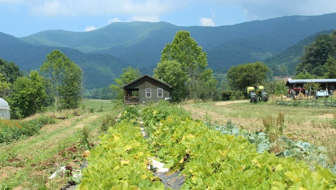 Full Sun Farm in Sandy Mush, photographed by Cecile Wright during a past ASAP Farm Tour.