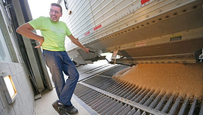 Dale Rahmlow, of Rahmlow Farms in Mishicot, unloads a truckload of soft red winter wheat from his truck at Nidera Grain.