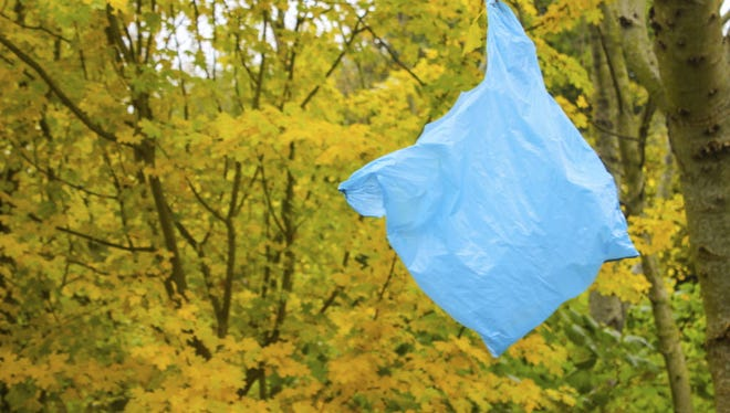 Grocery bags are often found in trees, and  bags and other thin plastic make up about 20 percent of all the plastic debris collected in North Jersey's waterways, according to a 2016 study by NY/NJ Baykeeper.