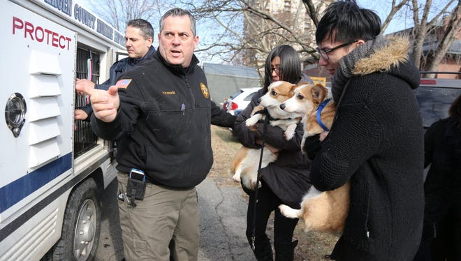Animal Control Officer Vincent Ascolese, foreground left, returns two dogs to Avalon Apartments' fire victims in Edgewater in January 2015.