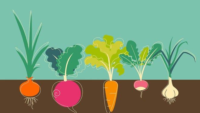 Plant a vegetable garden.