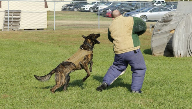 Many Delaware K9 units recently received national certifications in drug and explosive searches.