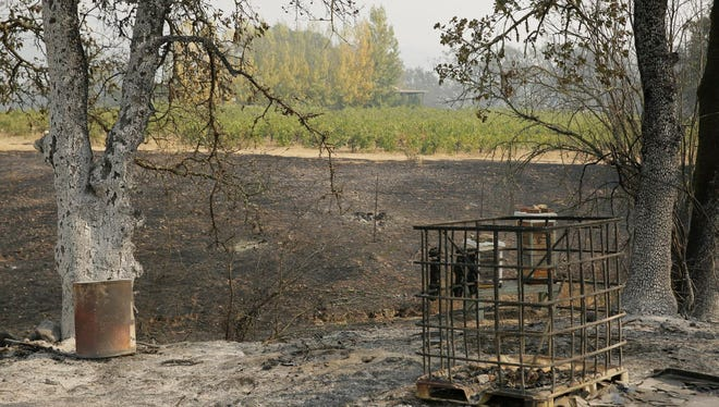 Burnt ground sits next to vines in Glen Ellen, Calif., Oct. 10, 2017. Workers in Northern California's renowned wine country picked through charred debris and weighed what to do with pricey grapes after wildfires swept through lush vineyards and destroyed at least two wineries and damaged many others.