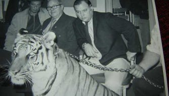 "Keeping an eye on a tiger named ""Sugar"" from Jungle Habitat on a visit to the West Milford Town Hall in the 1970s are from left Albert Carbone, Mayor Charles DeLade and Charles Champanois."
