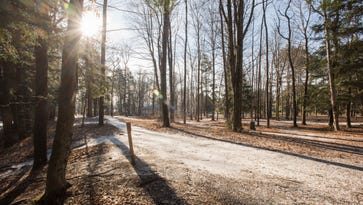 Light shines through some trees at the Croswell Park Sunday, Jan. 16, in Croswell.