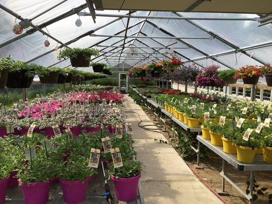 Des Moines garden center set to close Aug 2