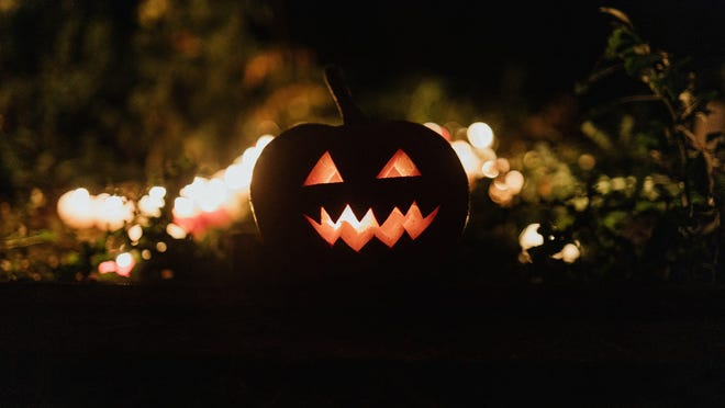 If you are not comfortable with going out and celebrating Halloween this year, you are not alone. But there are many other things you can do with your time either alone or with a friend or two.