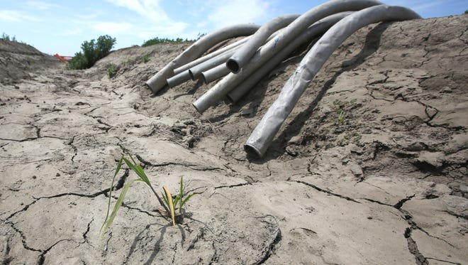 California regulators Friday accepted a historic offer from a group of farmers holding some of the state's strongest water rights to voluntarily reduce their water use by one-quarter to stave off deeper, mandatory cutbacks amid one of the worst droughts on record. (AP Photo/Rich Pedroncelli)