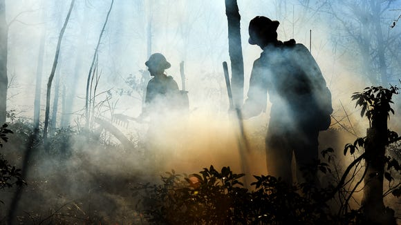 Firefighters working with The Nature Conservancy work a prescribed burn on 154 acres of land near Lake James on Jan. 14.
